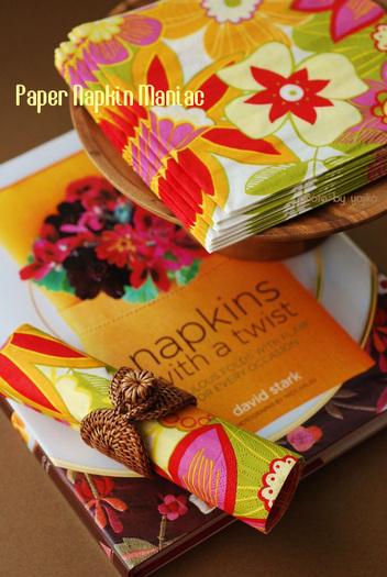 02papernapkin2_1