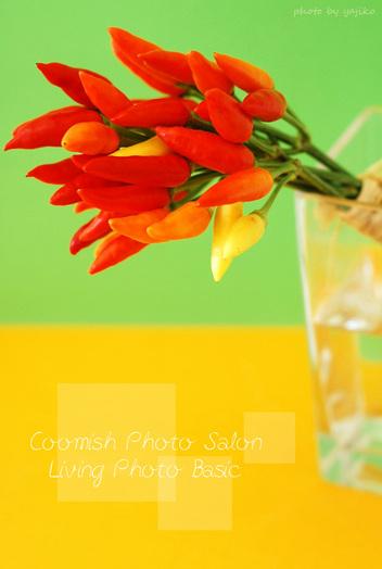 09livingphoto5_1