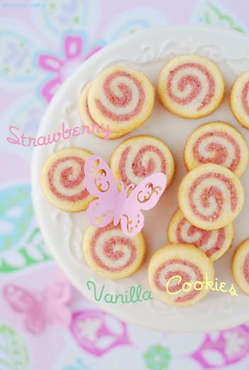 05mujicookie_1